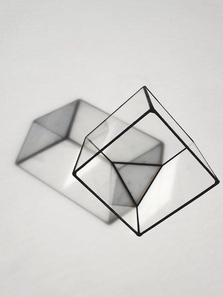 Флорариум в виде усеченного куба в Ярославле