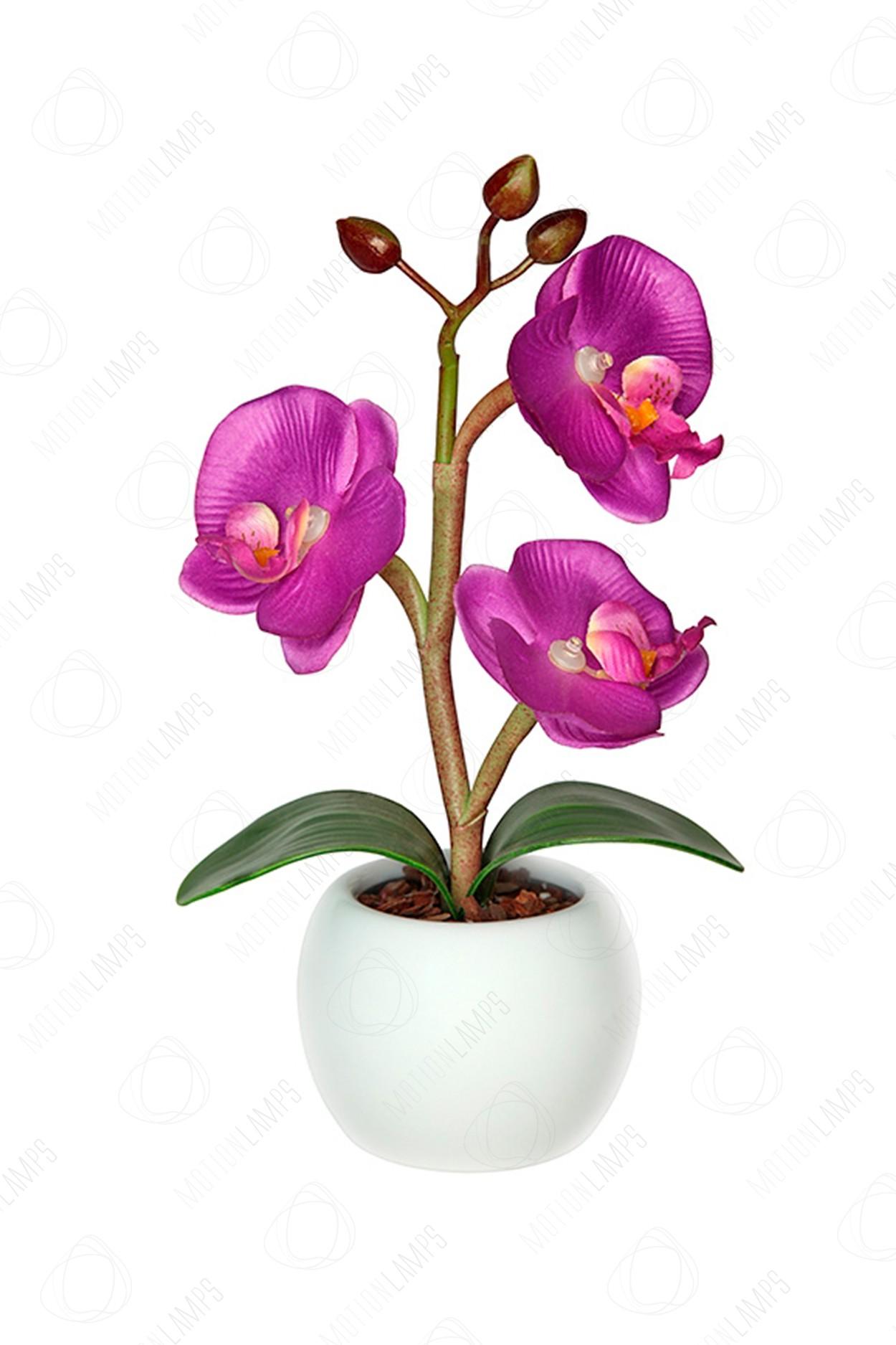 Светодиодный светильник Орхидея mini фиолетовая в Ярославле