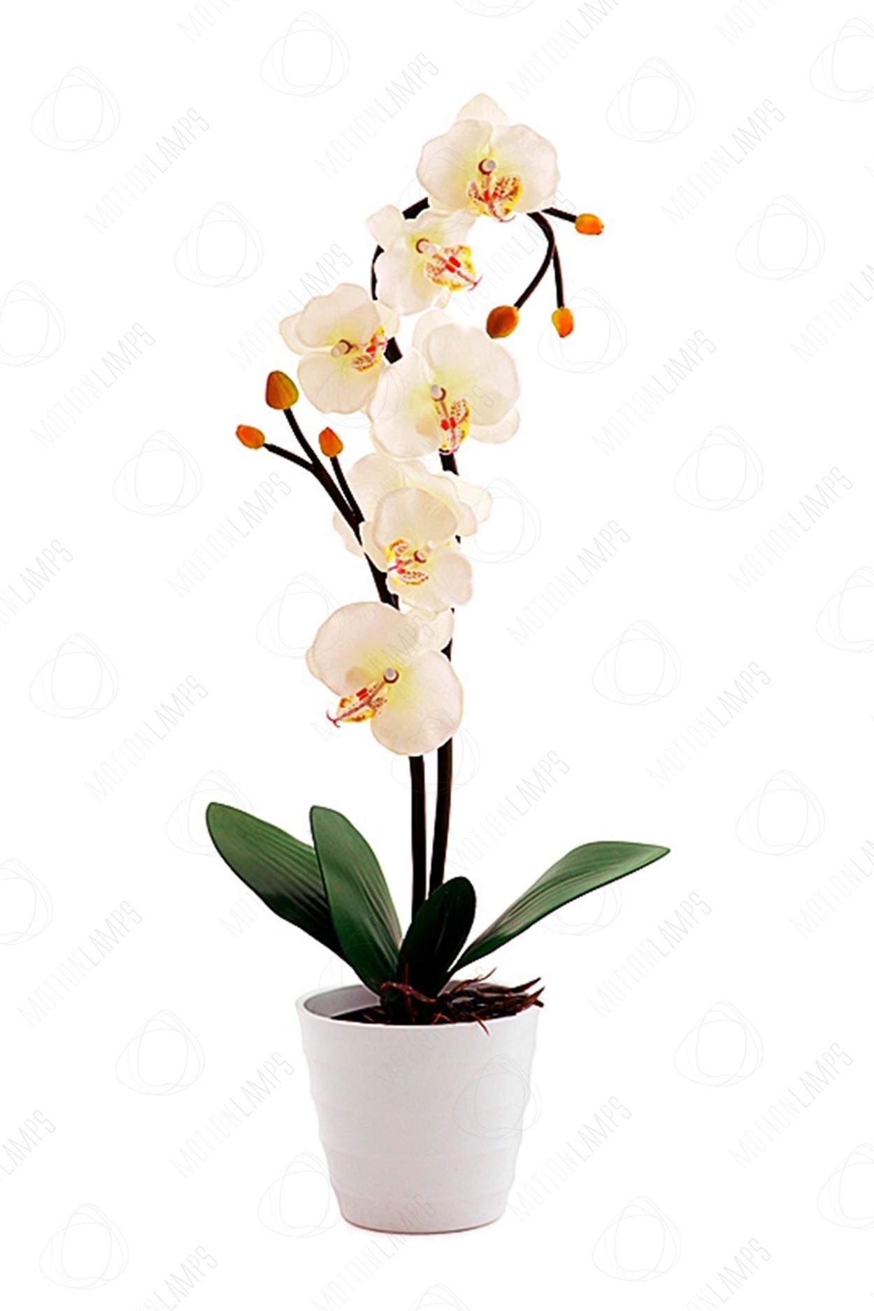 Светодиодный светильник Орхидея белая в Ярославле