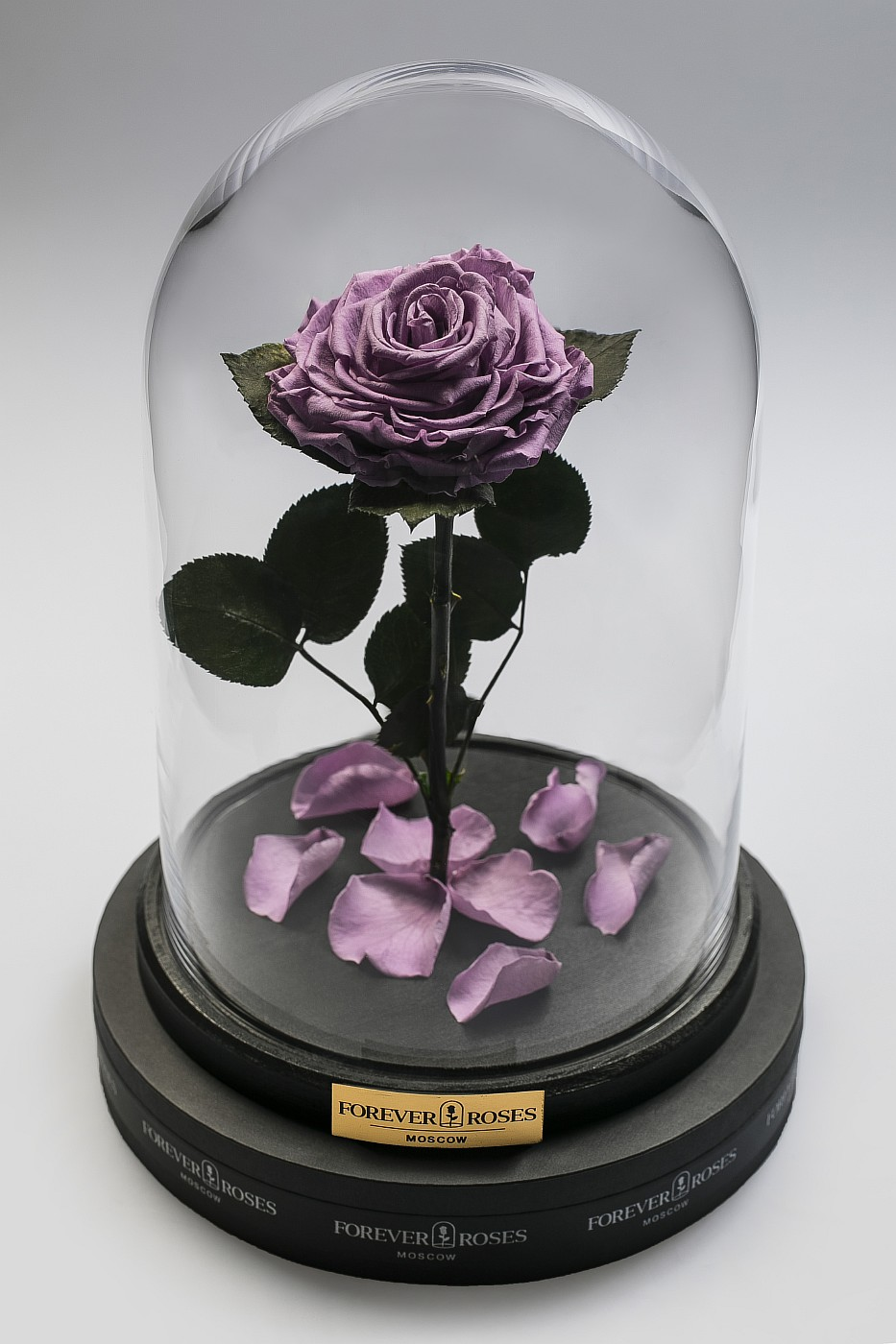 Роза в колбе (сиреневая) на прямом стебле, 27 см в Ярославле