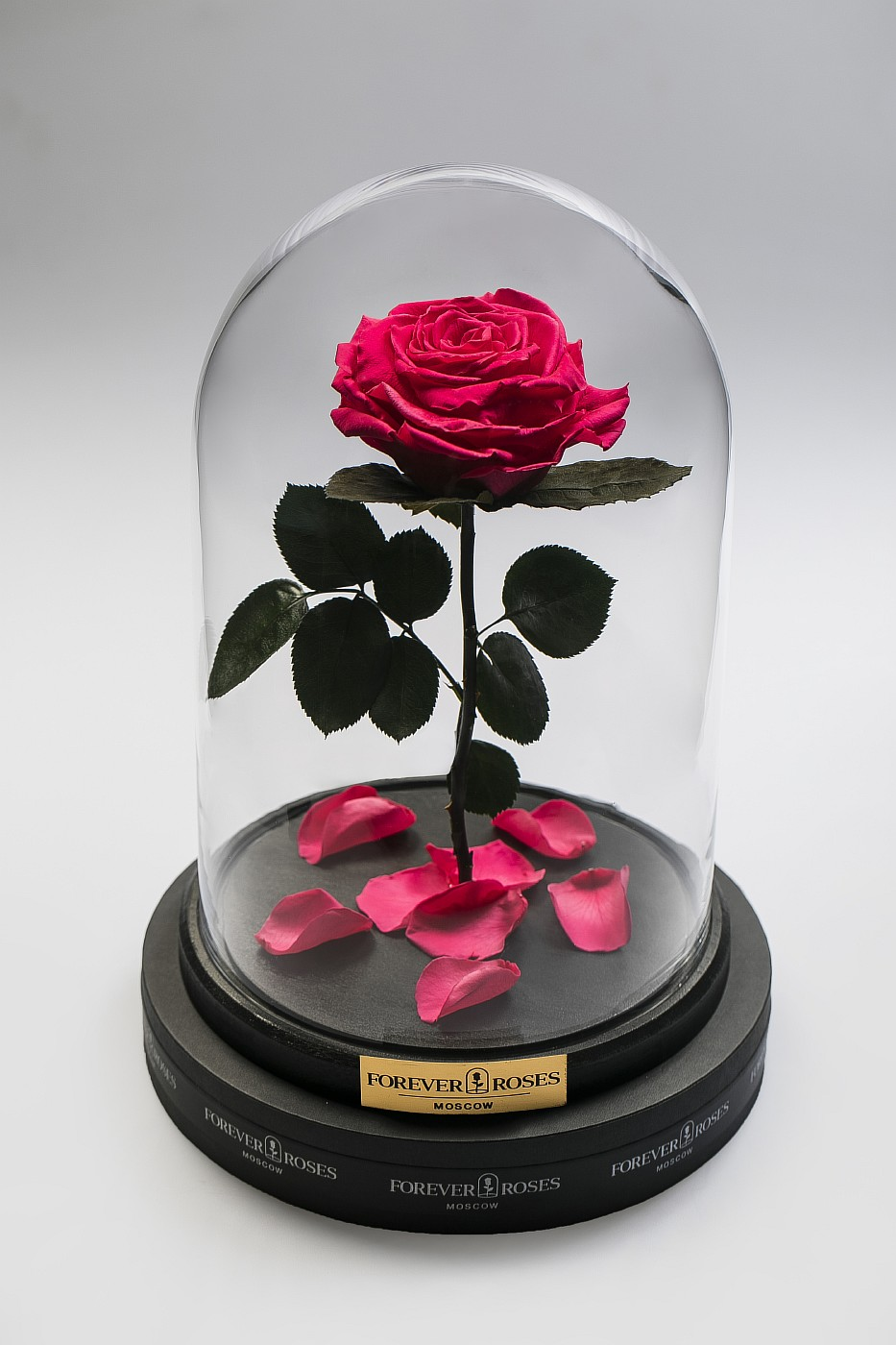 Роза в колбе (ярко розовая) на прямом стебле, 27 см в Ярославле