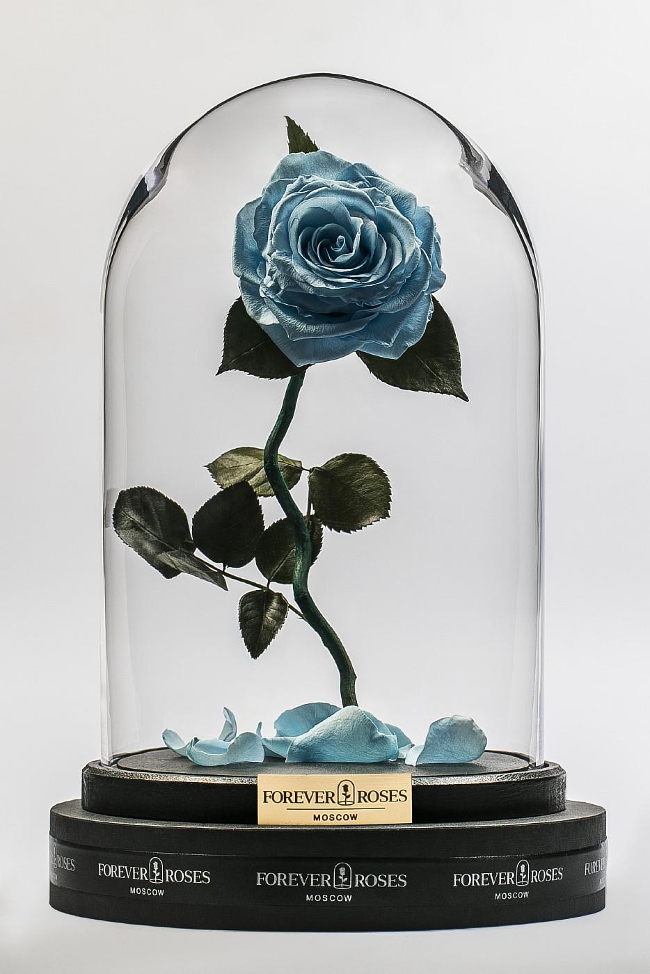 Роза в колбе (голубая) на изогнутом стебле, 33 см в Ярославле