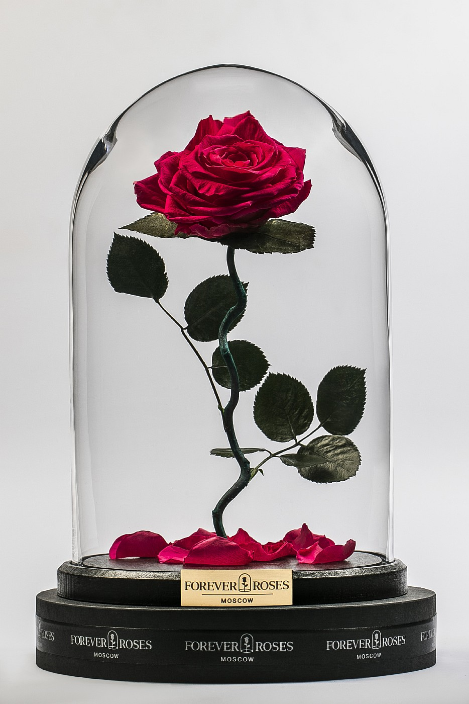 Роза в колбе (ярко розовая) на изогнутом стебле, 33 см в Ярославле