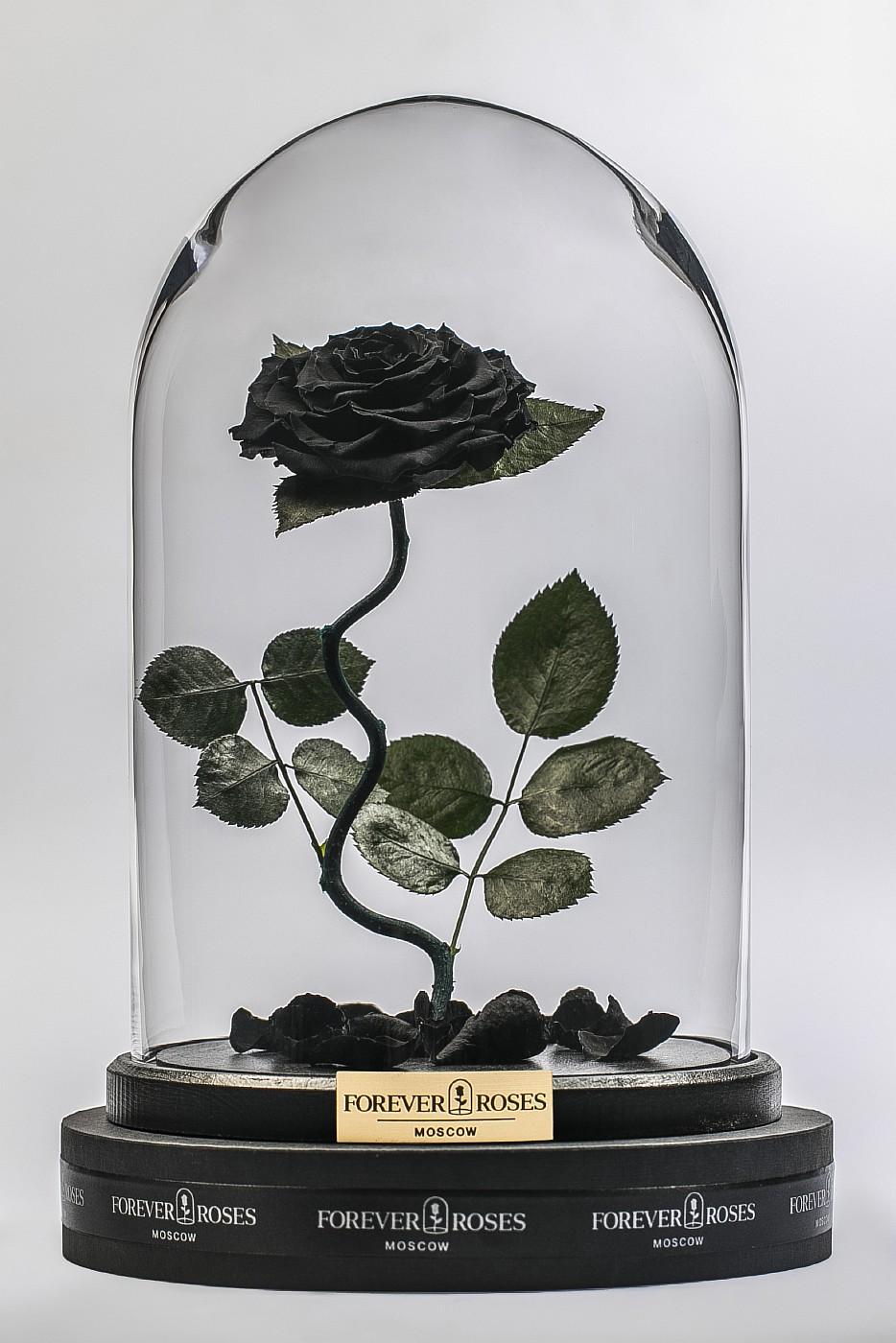 Роза в колбе (черная) на изогнутом стебле, 33 см в Ярославле
