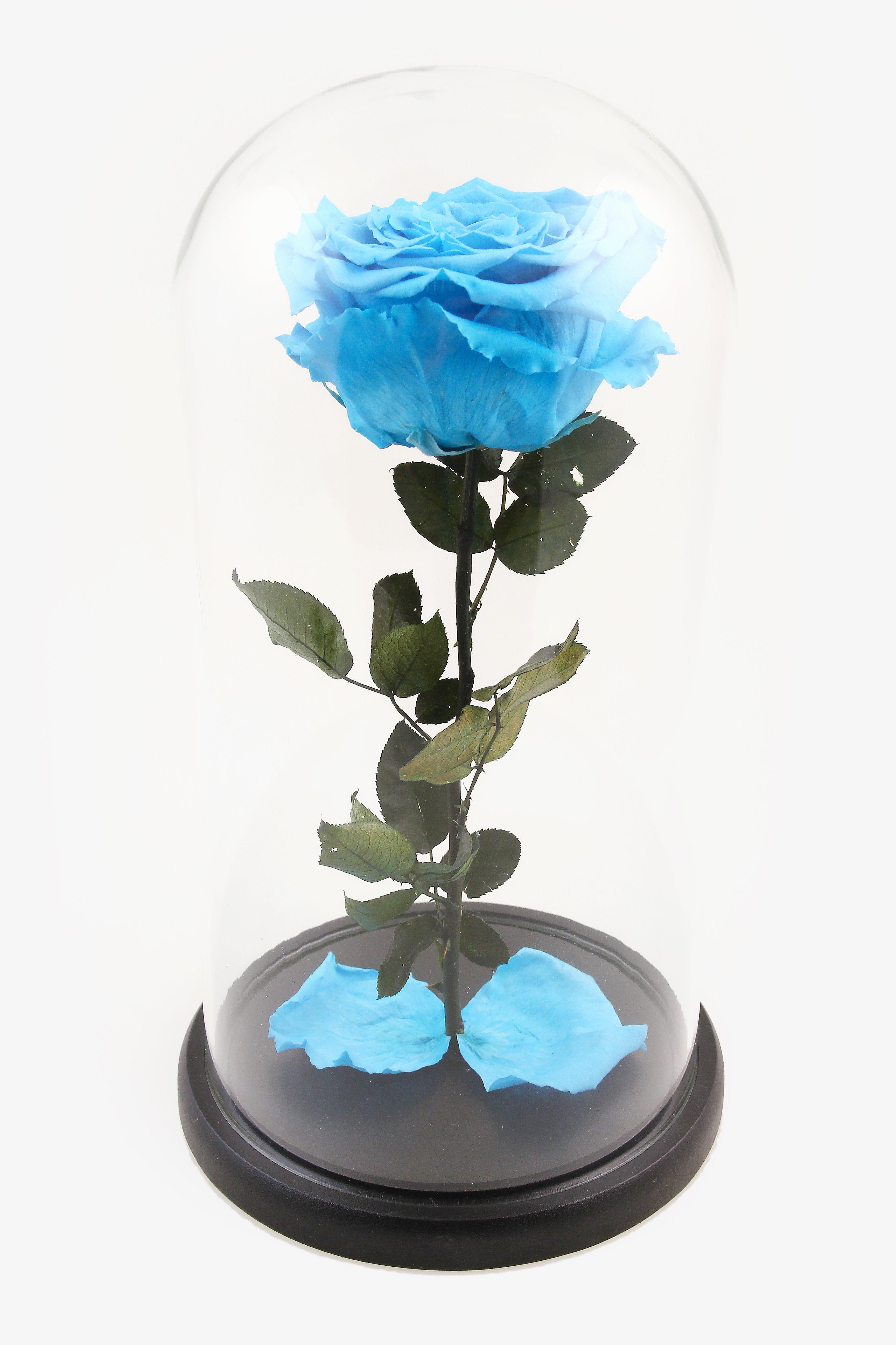 Вечная роза в колбе (голубая) в Ярославле