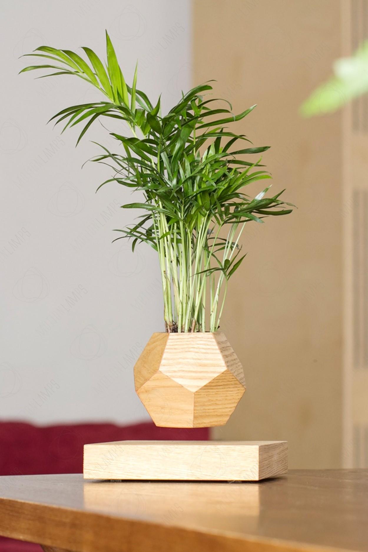 Левитирующий горшок LePlant Wood светлый (для растений) в Ярославле